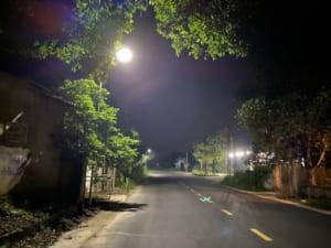 Đèn đường lá năng lượng 100w.4