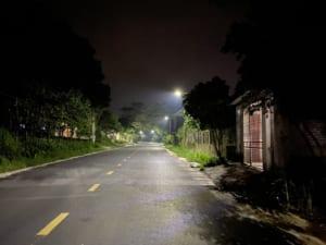 Đèn đường lá năng lượng 100w.3
